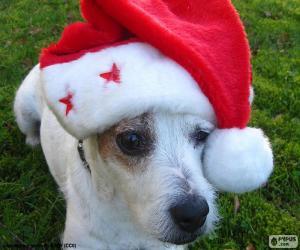 Rompicapo di Cane di Natale