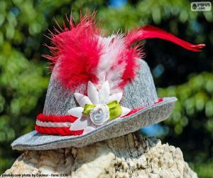 Rompicapo di Cappello bavarese