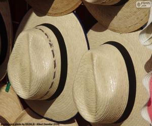 Rompicapo di Cappello pànama