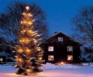 Rompicapo di Casa con un grande albero di Natale decorato in giardino