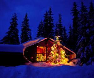 Rompicapo di Casa con un grande albero di Natale decorato in il giardino