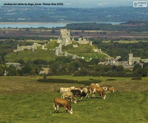 Rompicapo di Castello di Corfe, Inghilterra