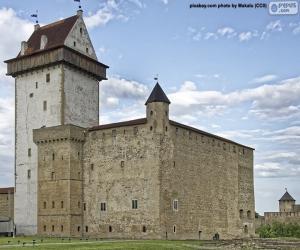 Rompicapo di Castello di Hermann, Estonia