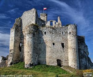 Rompicapo di Castello di Mirów, Polonia