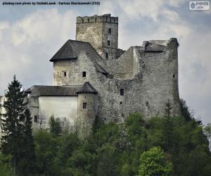 Rompicapo di Castello di Niedzica