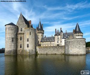 Rompicapo di Castello di Sully-sur-Loire, Francia
