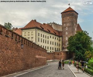 Rompicapo di Castello di Wawel, Polonia