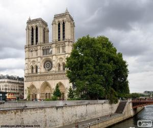 Rompicapo di Cattedrale di Notre-Dame, Parigi