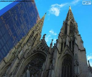 Rompicapo di Cattedrale di San Patrizio, New York