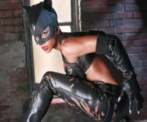 Rompicapo di Catwoman, una ladra di gioielli e rivale di Batman per il quale si sente una forte attrazione romantico