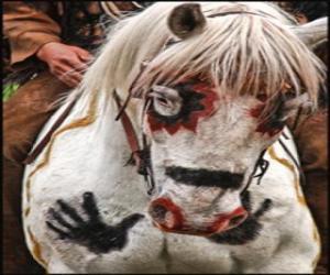 Rompicapo di Cavallo ndiano