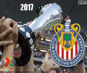 Rompicapo di C.D. Guadalajara, campione Clausura 2017