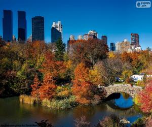 Rompicapo di Central Park, New York