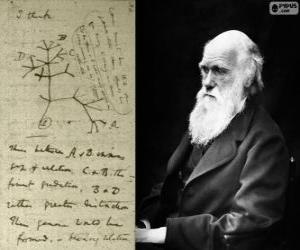 Rompicapo di Charles Darwin (1809-1882), biologo britannico