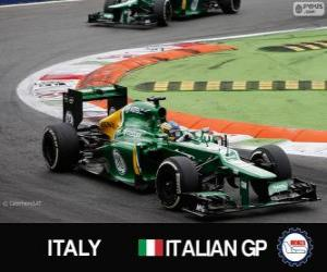 Rompicapo di Charles Pic - Caterham - Monza, 2013