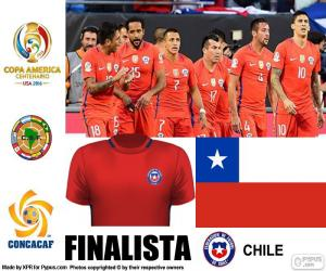 Rompicapo di CHI finalista Copa America 2016