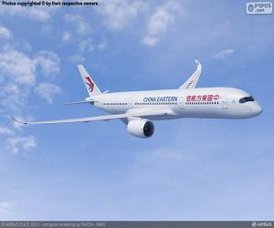 Rompicapo di China Eastern Airlines