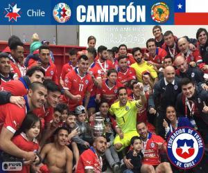 Rompicapo di Cile, campione Coppa America 15