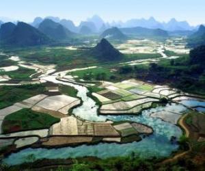 Rompicapo di Cina rurale, i campi di fiume e di riso