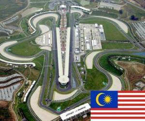 Rompicapo di Circuito di Sepang - Malesia -