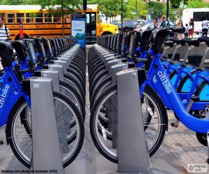 Rompicapo di Citi Bike, New York