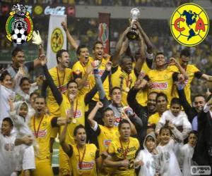 Rompicapo di Club America, campione del torneo Clausura 2013, Messico