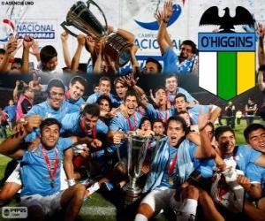 Rompicapo di Club Deportivo O'Higgins, Campione cileno Apertura 2013