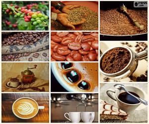Rompicapo di Collage di caffè