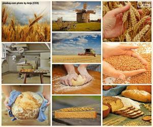 Rompicapo di Collage di pane