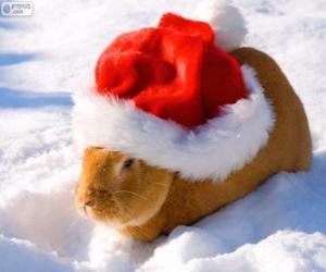 Rompicapo di Coniglio con un cappello di Babbo Natale