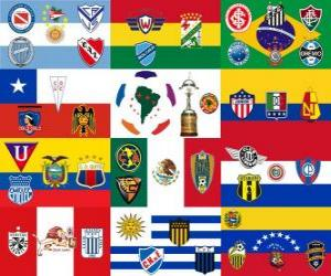 Rompicapo di Coppa Libertadores 2011