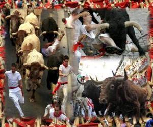 Rompicapo di Corsa dei tori o encierro, Sanfermines. Pamplona, Navarra, Spagna. Feste di San Firmino dal 6 al 14 luglio