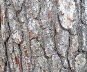 Rompicapo di Corteccia di pino