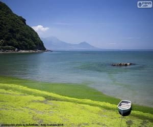 Rompicapo di Costa Occidentale di Kyūshū, Giappone
