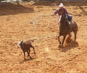 Rompicapo di Cowboy che monta un cavallo e che interferisce una testa del bestiame con il lasso