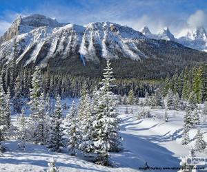 Rompicapo di Crowfoot Mountain, Canada