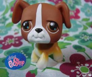Rompicapo di Cucciolo da PetShop Littlest