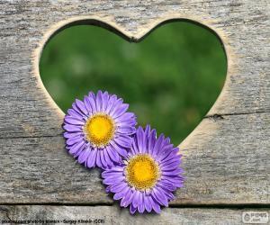 Rompicapo di Cuore e due fiori