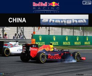 Rompicapo di D. Kuyat Gran Premio Cina 2016
