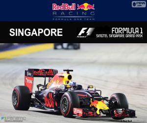 Rompicapo di D. Ricciardo, GP Singapore 2016