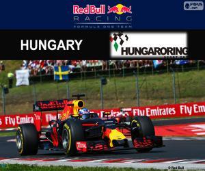 Rompicapo di D. Ricciardo, GP Ungheria 2016