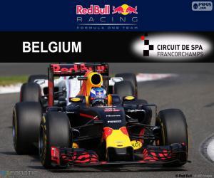 Rompicapo di Daniel Ricciardo GP Belgio 2016