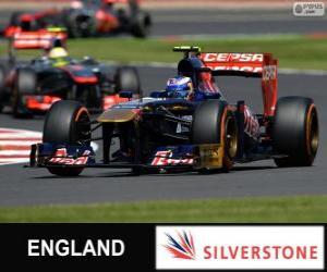 Rompicapo di Daniel Ricciardo - Toro Rosso - Silverstone, 2013