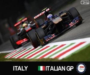 Rompicapo di Daniel Ricciardo - Toro Rosso - Monza, 2013