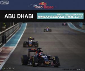 Rompicapo di Daniil Kvyat, GP Abu Dhabi 2016