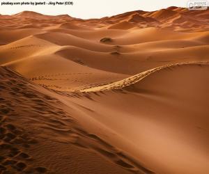 Rompicapo di Deserto del Marocco