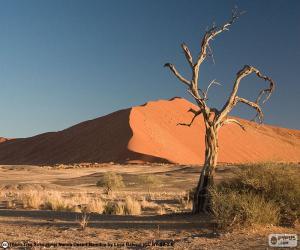 Rompicapo di Deserto del Namib, Namibia