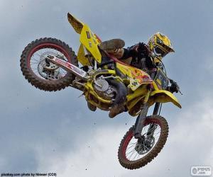 Rompicapo di Di motocross salta