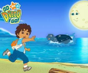Rompicapo di Diego sulla spiaggia e una tartaruga marina in acqua