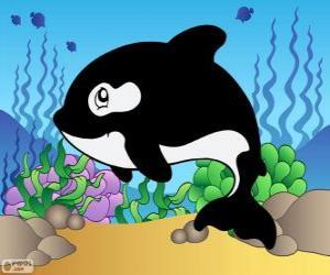 Rompicapo di Disegno di una orca